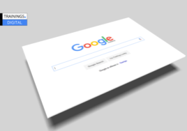 google indexing bug 2019